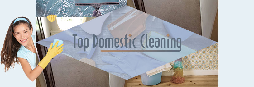 about top domestic cleaning
