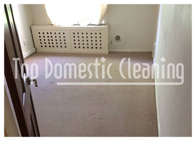 top domestic cleaning